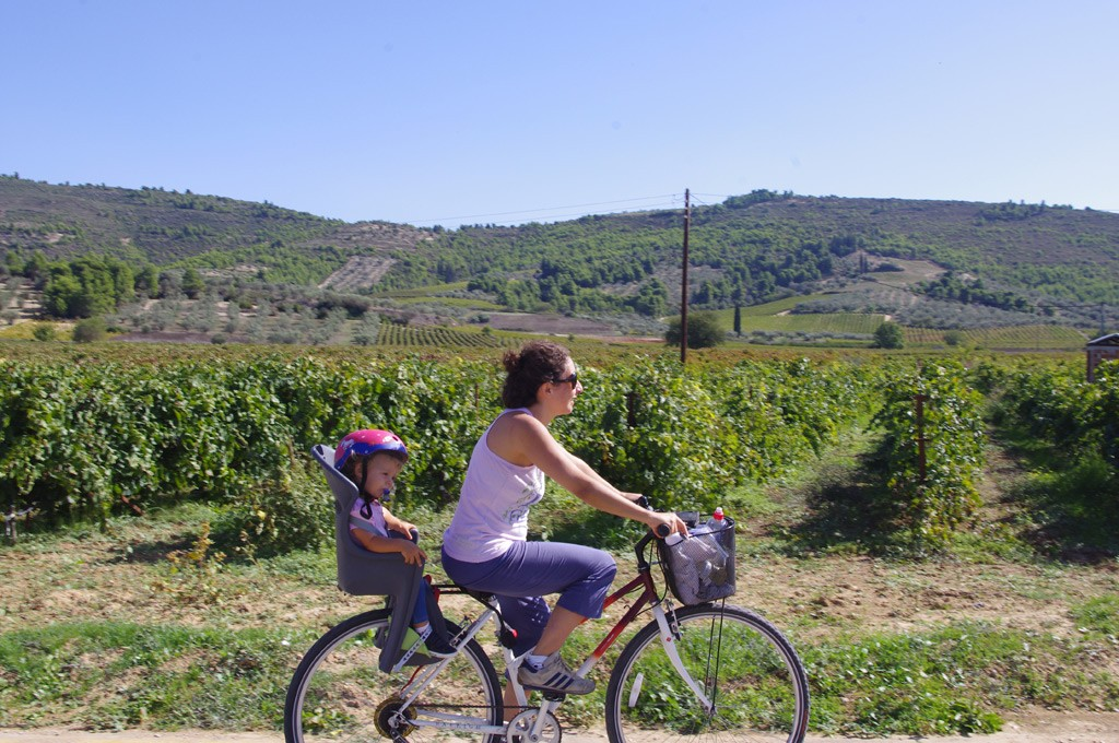 daphnes-hotel-activities-cycling-wine-tasting-5
