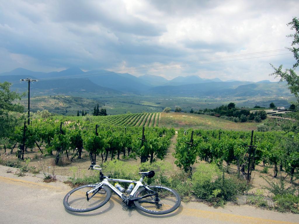 Cycling & Wine-tasting in Nemea