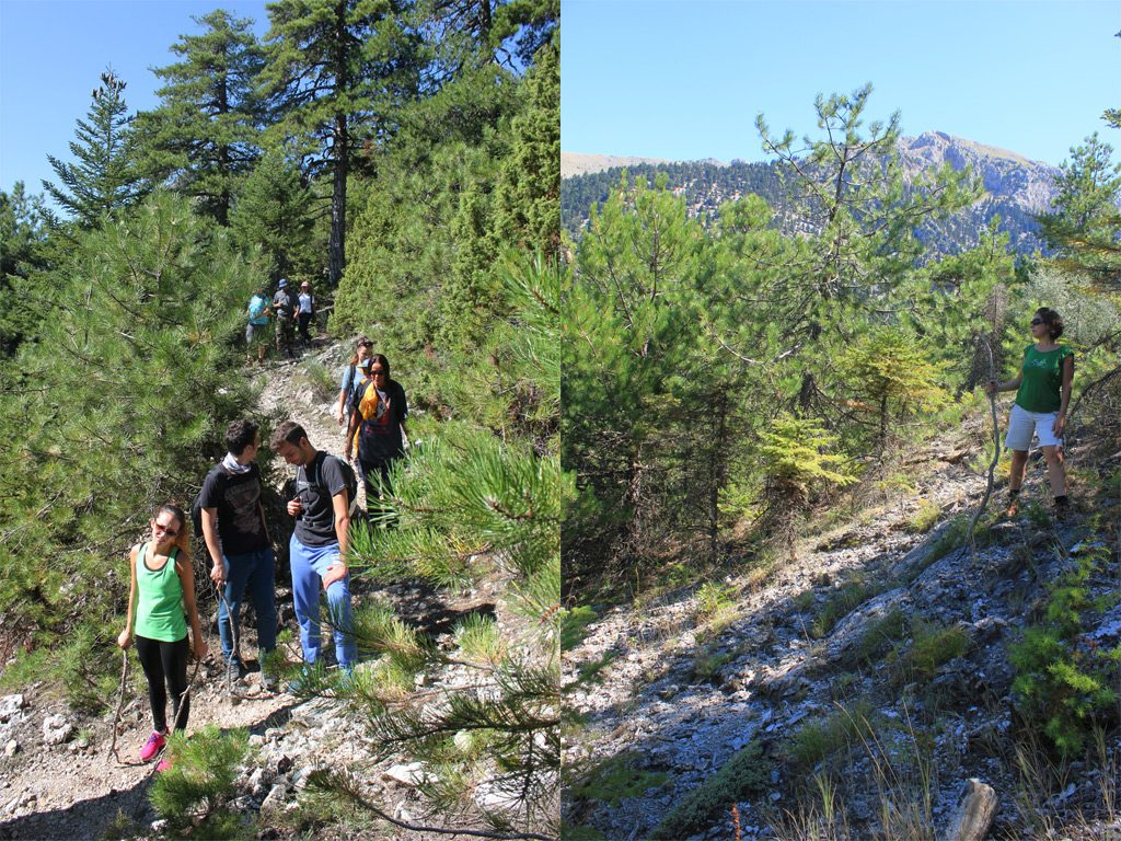 Hiking Corinthia Flambouritsa