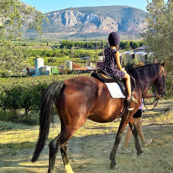 horse riding trikala