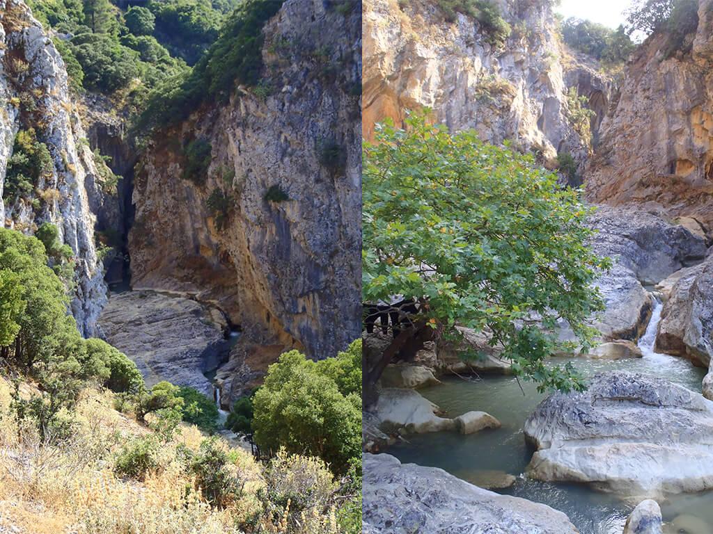 mountain buggies explore ziria
